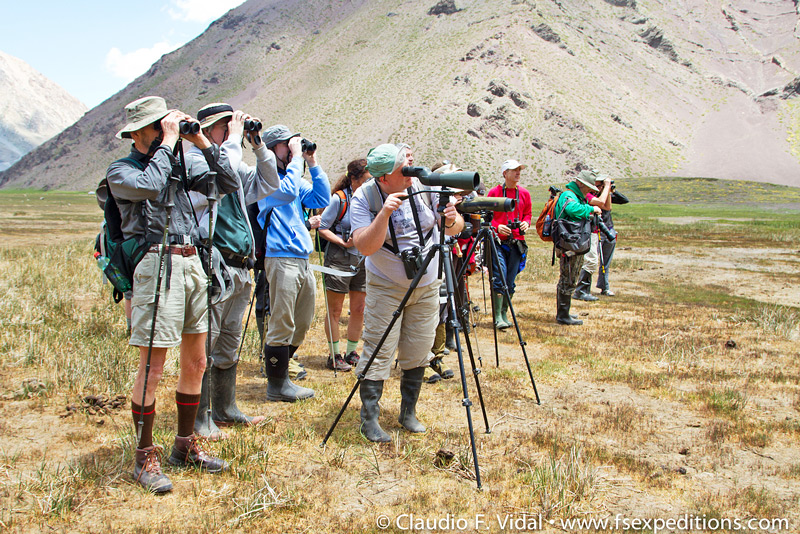 Birding at the beautiful mountain surroundings of El Yeso reservoir, near Santiago, Chile © Far South Expeditions