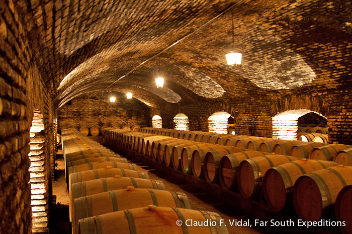 The Devil's Cellar, Viña Concha y Toro, Maipo Valley, Chile © Claudio F. Vidal, Far South Exp
