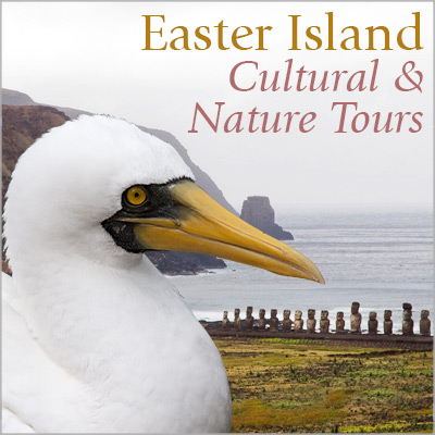 Easter Island Cultural & Nature Tours