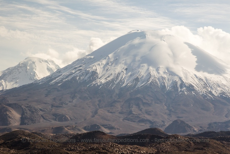 The the omnipresent and imposing Payachatas, meaning ¨The Twin Volcanoes¨, the Pomerape, 6232m/20,446ft and the Parinacota, 6,110m/20,046ft, Lauca National Park, Chile © Claudio F. Vidal, Far South Expeditions