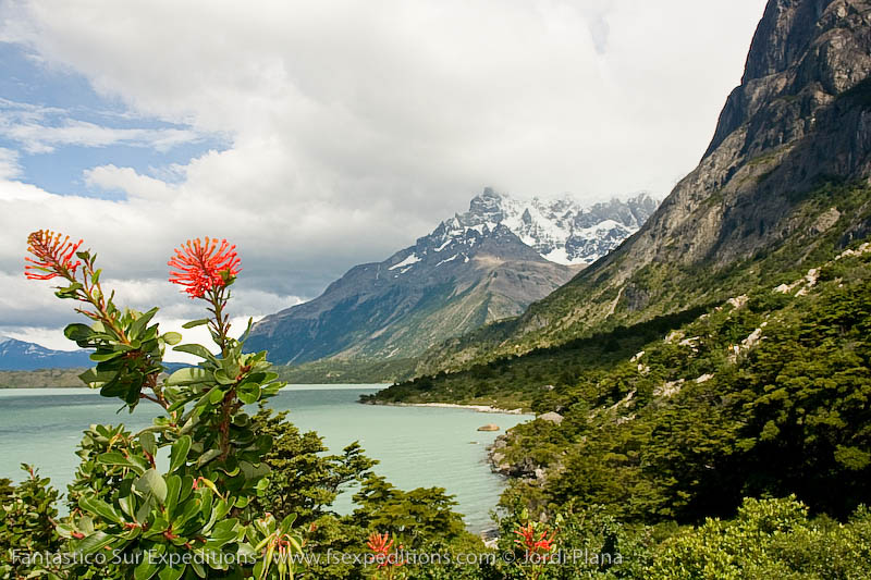 Paine Grande and Lake Nordenskjöld, Torres del Paine, Chilean Patagonia © FS Expeditions.com