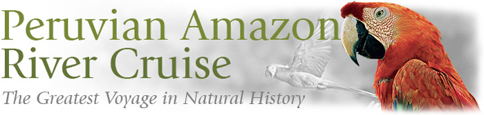 Amazon River Cruise The Greatest Voyage in Natural History